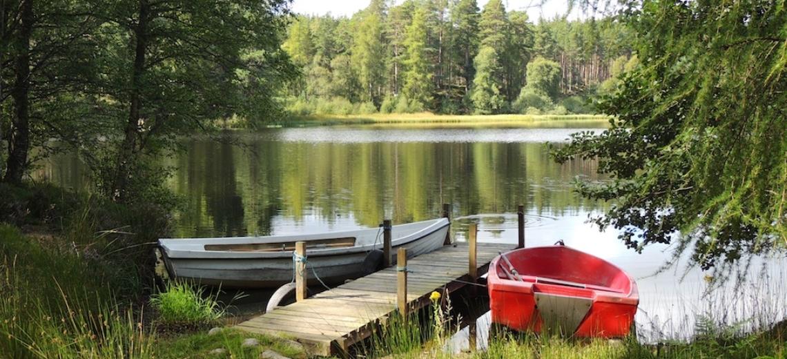Loch of Boath (2)